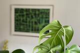 Green Urban Pattern