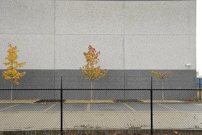 Collateral Image 01 (2013), Baijg (Art Print)